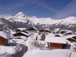 Bel appartement lumineux à Crest Voland pour 8 personnes dans le domaine skiable Espace Diamant